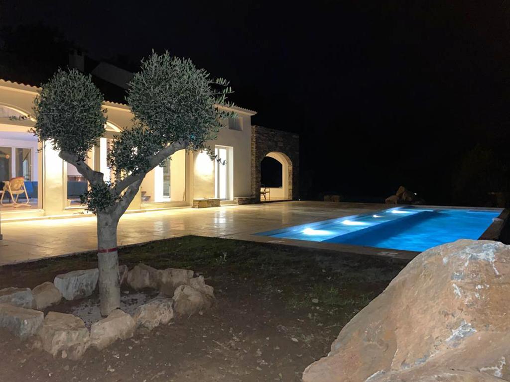 piscine-arbre-albitru